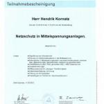 Netzschutz Mittelspannungsanlagen